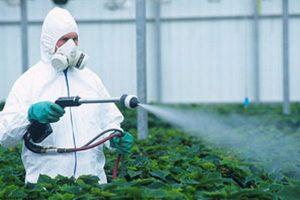 tratamentele fitosanitare