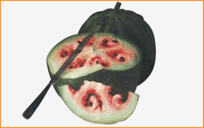 pepenele salbatic