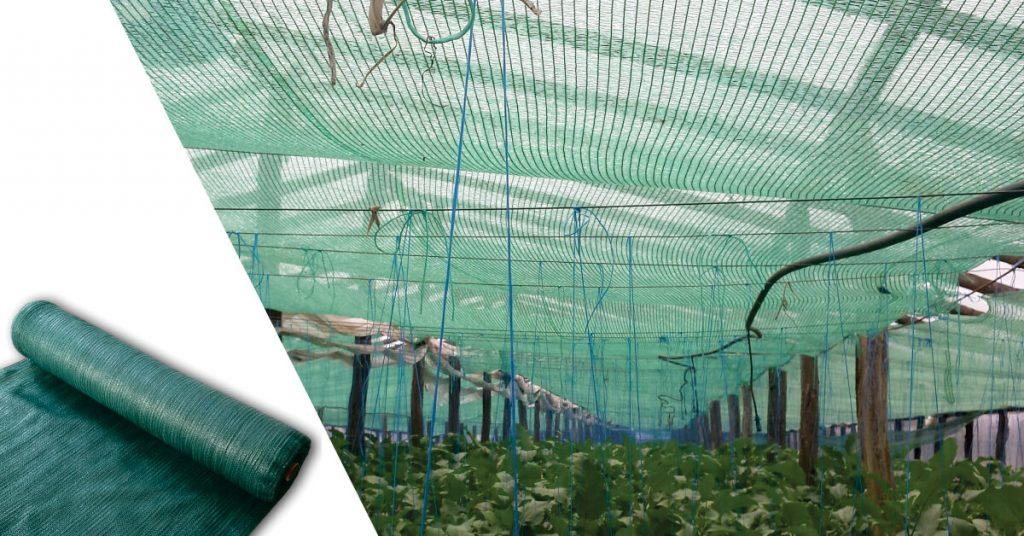 plasa de umbrire pentru protectia legumelor