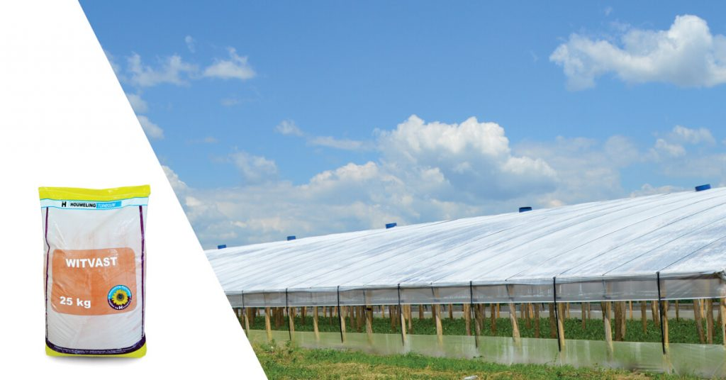 Solutie pentru stropirea solarului - Witvast